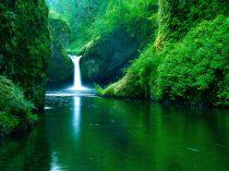11249_waterfall